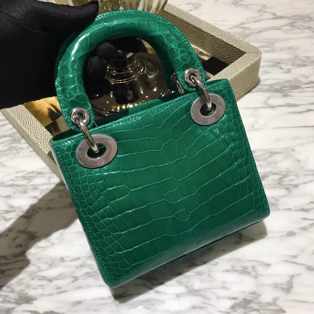 Dior 迪奥 鳄鱼皮钻石扣欢迎定制 出货实拍 小号
