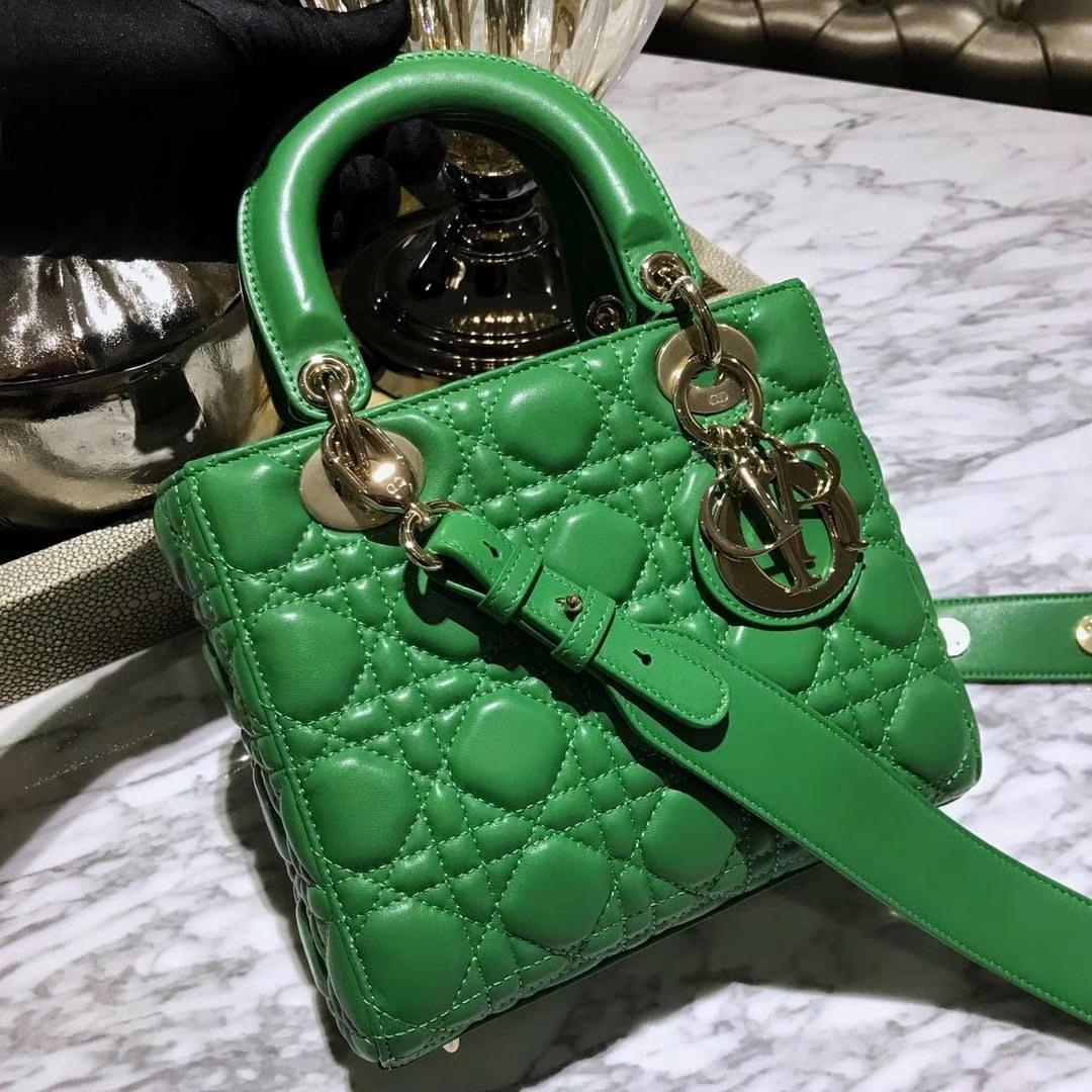 Dior 迪奥 仙人掌绿 气质绿色 进口原厂羊皮 双色效果 亚里透亮 亮里带亚