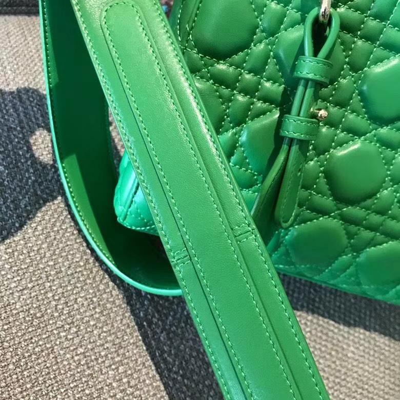 Dior 迪奥 戴妃包 Lady Dior 意大利 原厂皮 双色效果 女包市场
