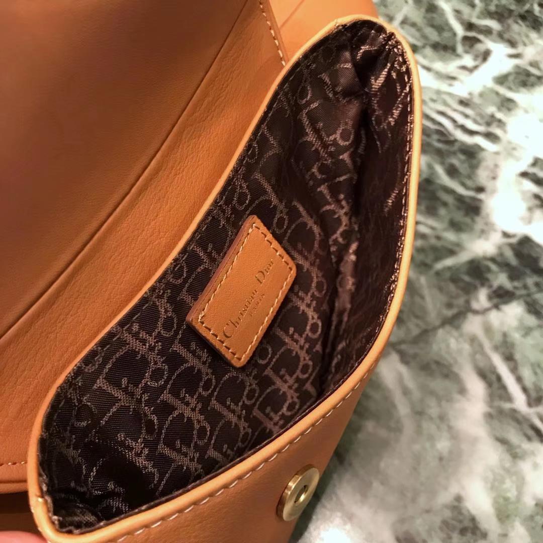 Dior新款腰包金棕色 进口头层皮 小巧实用款