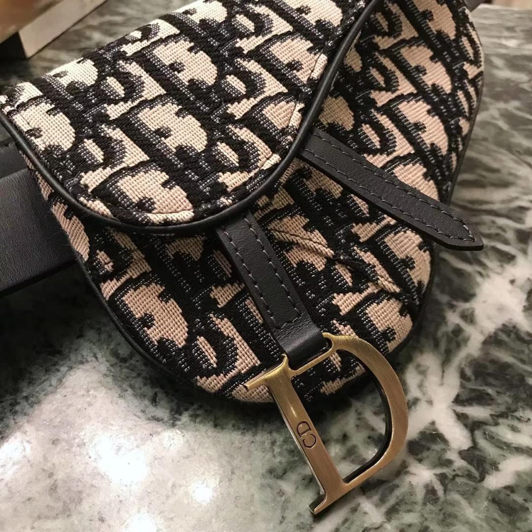 Dior 新款腰包 老花布纹 进口头层皮 小巧实用款